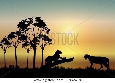 illustration of two leopards resting at sunrise poster