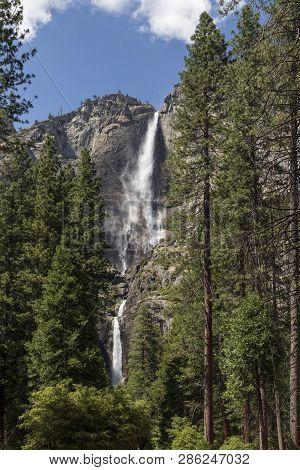 Towering Yosemite Falls
