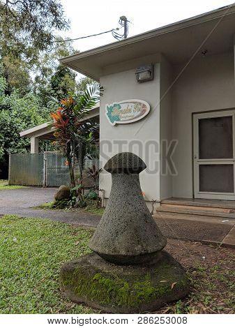 Kauai - April 6, 2018:  Large Poi Pounder Outside The Hanalei Poi Factory. Poi Delicious And Sweet,