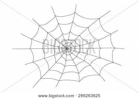 Cobweb Isolated On White, Transparent Background. Cobweb Elements, Creepy, Scary, Horror Halloween D