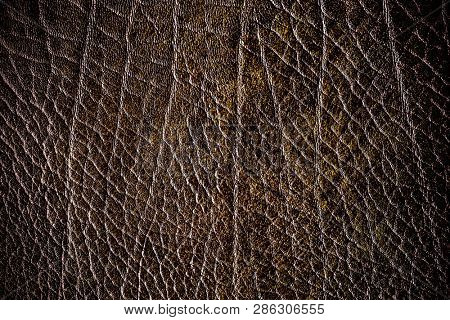 Brown creased leather textured background poster
