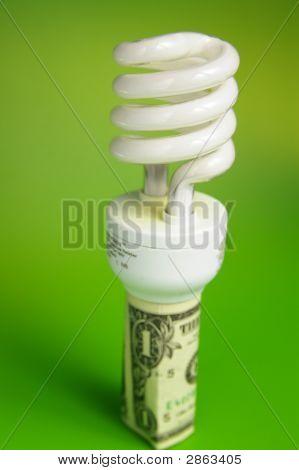 Dollar Bulb