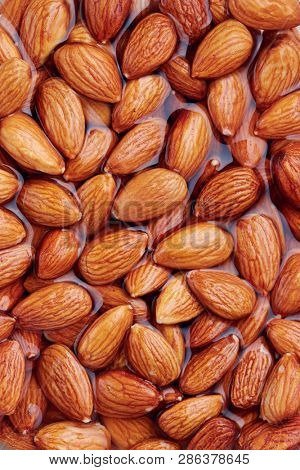 Soaking almonds in water. Almonds being softened in water to create almond milk.  poster