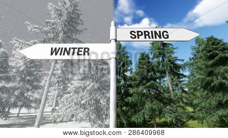 Way Choice Showing Strategy, Winter Spring , 3d Rendering