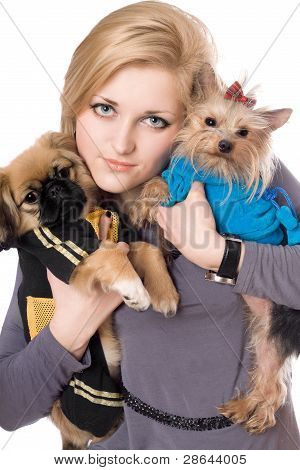 Portrait of attractive blonde with two dogs. Isolated on white poster