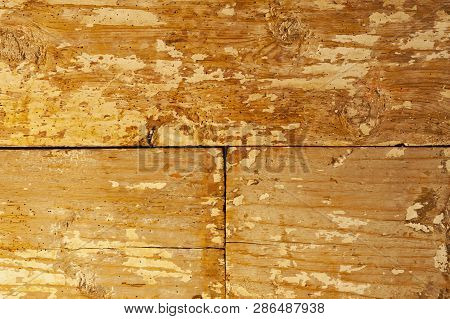 Close Up Of Abstract Surface Of Wood Background