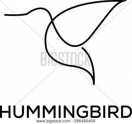 Unique Humming Bird Logo Template, Line Art And Minimalist