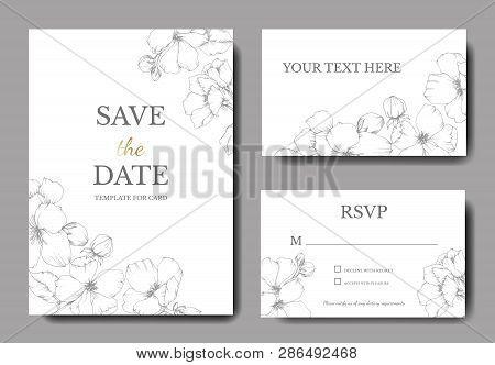 Vector Grey Apple Blossom Floral Botanical Flower. Engraved Ink Art. Wedding Background Card Floral