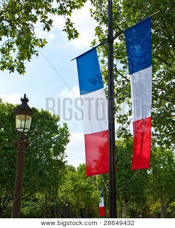 French Tricolor Flag in Paris