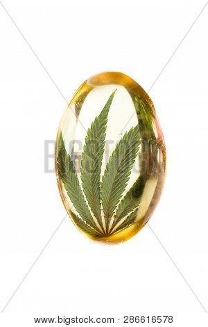 Cannabis Oil Capsule Concept