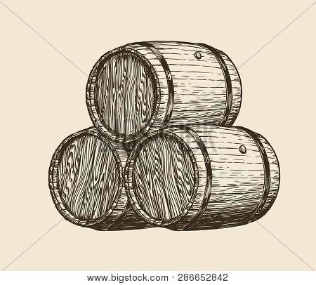 Wine Cellar, Winery. Wooden Barrels With Wine, Sketch. Vintage Vector Illustration