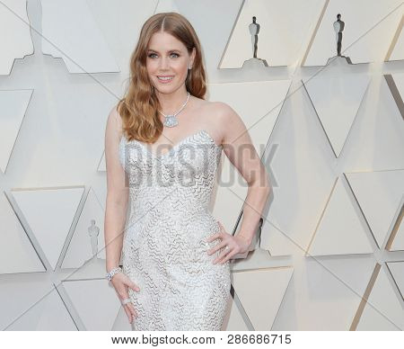 Amy Adams at the 91st Annual Academy Awards held at the Hollywood and Highland in Los Angeles, USA on February 24, 2019.