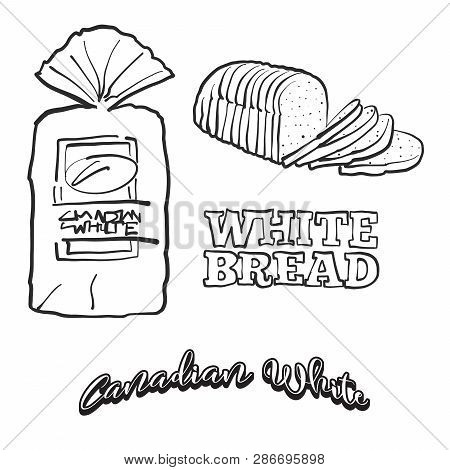 Hand Drawn Sketch Of Canadian White Bread. Vector Drawing Of White Food, Usually Known In Canada. Br