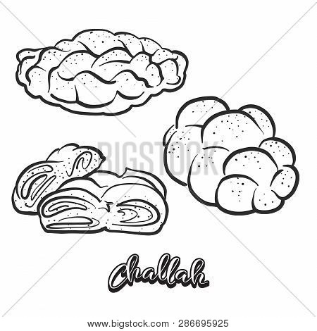 Hand Drawn Sketch Of Challah Bread. Vector Drawing Of Leavened Food, Usually Known In Poland And Isr