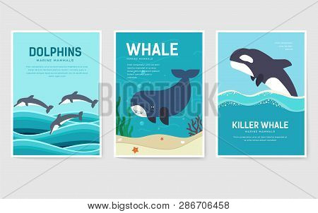 Set Of Sea Mammals Pattern Concept. Art Animal, Magazine, Book, Poster, Abstract, Banners, Element.