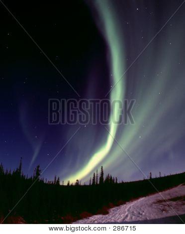 Narrow Aurora Arc
