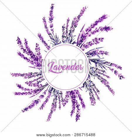 Lavender Flower Round Twig Watercolor Illustration. Circle Lavender Frame. Decoration Floral Design.