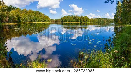 Blue sky with clouds reflecting in calm water of summer lake in a boreal forest, Panoramic view with grass and water lilies seen in foreground