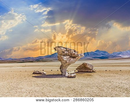 Arbol De Piedra (tree Of Rock), The Famous Stone Tree Rock Formation Created By Wind, In The Siloli