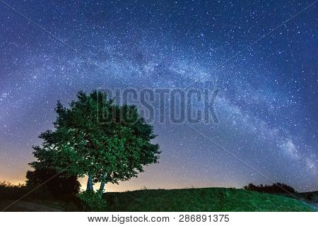 Night Landscape With Colorful Milky Way Stars Over The Tree Silh