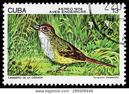 Luga, Russia - February 17, 2019: A Stamp Printed By Cuba Shows The Zapata Sparrow - A Medium-sized