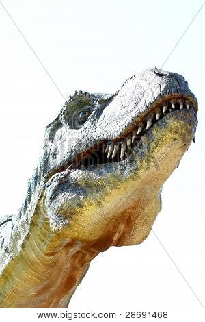 Dinosaur Tyrannosaurus Rex On White.