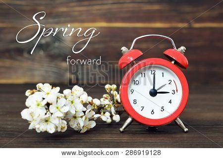 Daylight Saving Time, Spring Forward, Summer Time Change