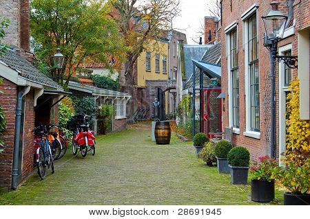 Dutch And Autumn