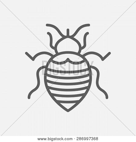 Bedbug Icon Line Symbol. Isolated Vector Illustration Of  Icon Sign Concept For Your Web Site Mobile