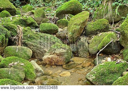 Almost Dry Temporary Creek In The Atlantic Forest Biome Of Brazil In The Dry Season, Showing Rocks C