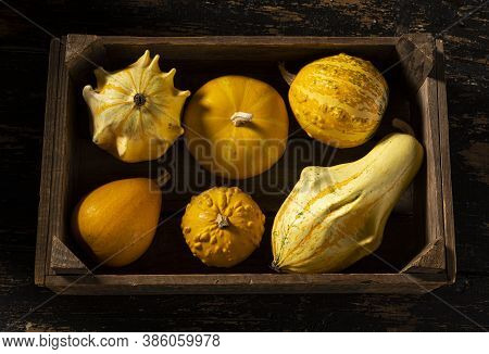 Gourds In Different Curious And Funny Shapes And Sizes.