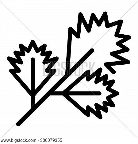 Parsley Icon. Outline Parsley Vector Icon For Web Design Isolated On White Background