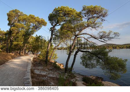 Walking Path On The Coast Of The Canal Of St. Ante Near Sibenik In Croatia