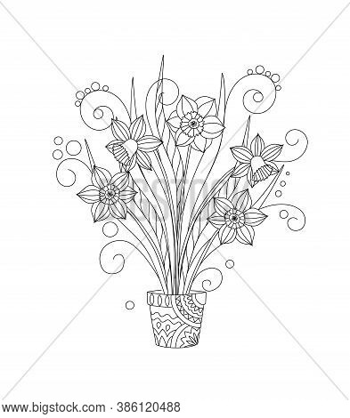 Monochrome Hand Drawn Isolated Narcissuses In The Pot. Black And White Illustrations For Anti-stress