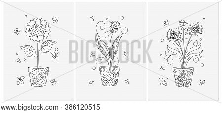 Set Of Three Monochrome Cards With Contour Isolated Flowers In The Pots. Black And White Illustratio