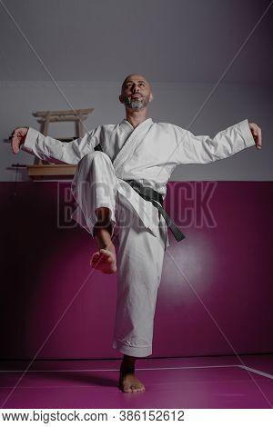 Karate Master In Crane Pose, Exercising In His Dojo