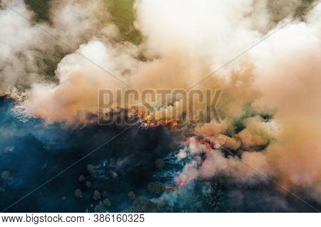 Forest Fire. Dry Trees Burn With Smoke, Wildfire Aerial View.