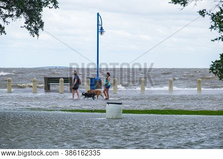 New Orleans, Louisiana/usa - 9/15/2020: Couple With Dogs Wading Through Flooded Lakeshore Drive Duri