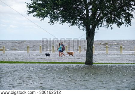 New Orleans, Louisiana/usa - 9/15/2020: Couple With Dogs Wading In Flooded Street On Lake Pontchartr