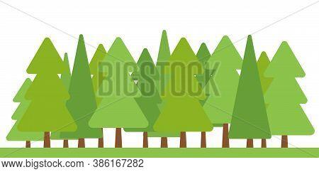 Summer Season With Green Trees Oak, Birch, Fir. Flat Cartoon Ecology Nature Forest Landscapes. Wildl
