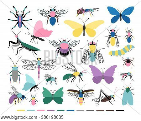 Cartoon Insect Set. Cute Small Creatures Of Entomology Science, Vector Illustration Of Colored Cater