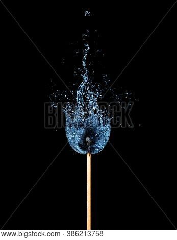 One Match That Burns With Water Splash. Conceptual Ecological And Nature Photo Against The Forest Fi