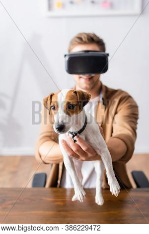 Selective Focus Of Young Businessman In Vr Headset Holding Jack Rassell Terrier Dog In Office