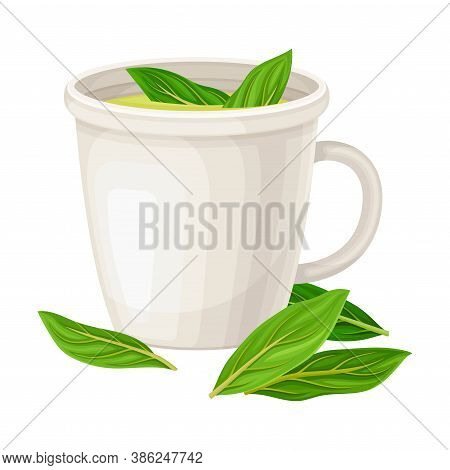 Cup With Pisco Garnished With Herbs As Peruvian Brandy From Distillation Of Muscat Grapes Vector Ill