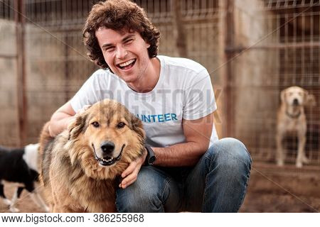 Happy Young Male Volunteer Sitting With Adorable Hairy Homeless Shepherd Dog Against Cages With Anim