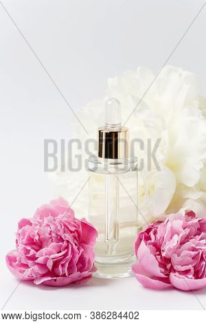 Glass Transparent Mockup Bottle With Dropper With Cosmetic Serum, Oil, Essence Among Pink And White