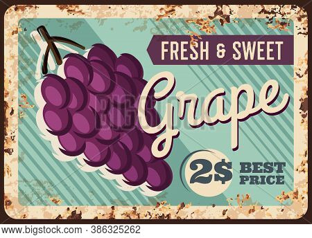 Grape Rusty Metal Plate, Fruits Farm Market Food Price Poster, Vector Vintage. Natural Organic Black