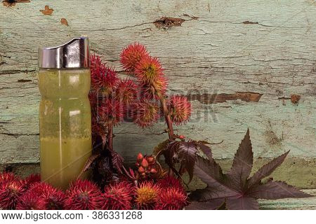 Red Castor Oil (ricunus Communis). Castor Oil Is Often Used As An Active Ingredient In Most Commerci