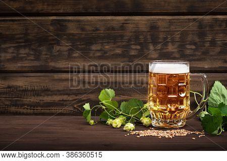 Mug Of Beer With Malt And Hops