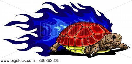 Vector Illustration Of Sulcata Land Tortoise Design
